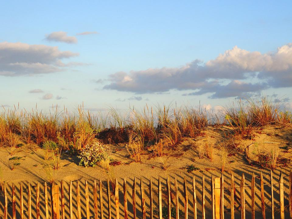 Dune, Beach, Sand, Atlantic Coast