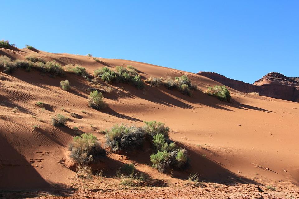 Usa, Dune, Sand, Desert, Nature, Landscape, Nevada