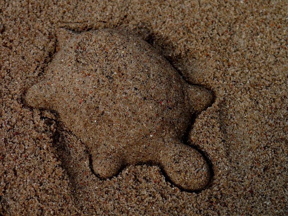 Turtle, Sand Mold, Sand, Animal, Play