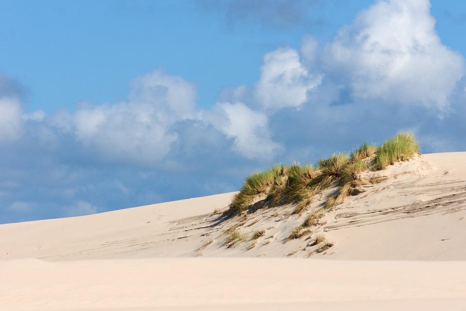 Dunes, Sand Dunes, Poland, Sand, Beach, Coast