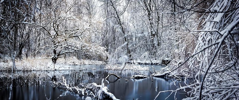 Winter, Saxony, Snow, Nature, Landscapes, Winter Magic