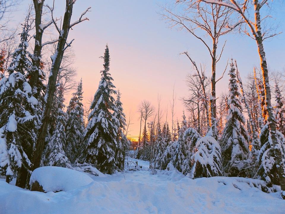 Dawn, Winter, Landscape, Snow, Morning, Scene