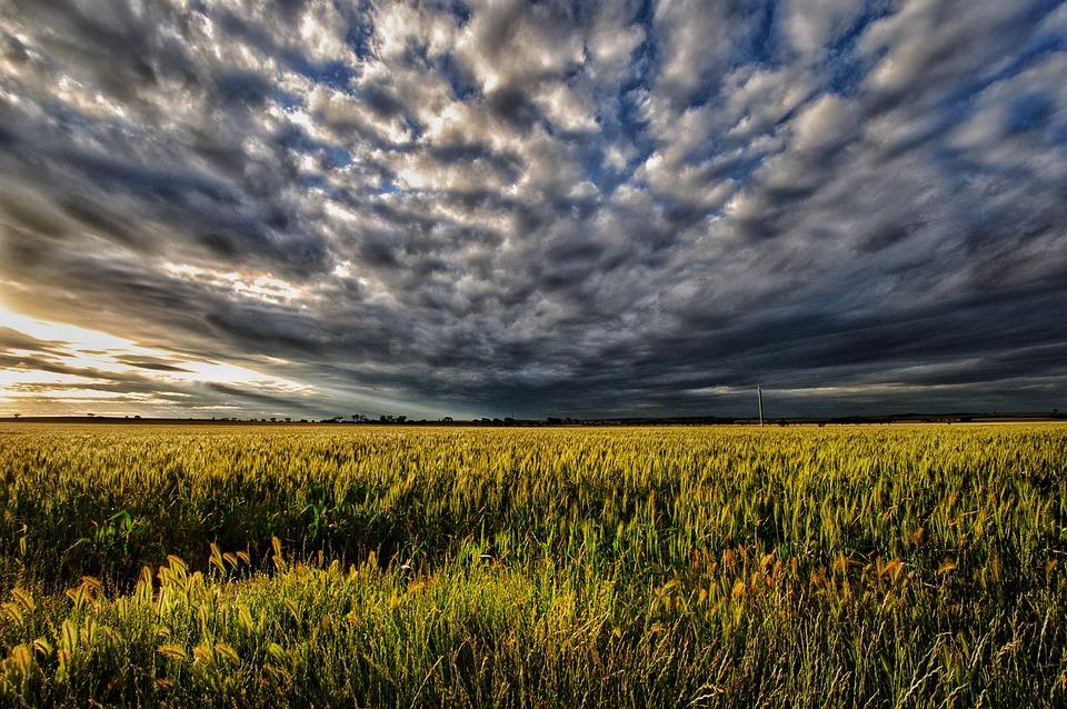 Sunset, Moody, Pasture, Storm, Weather, Cloud, Scene