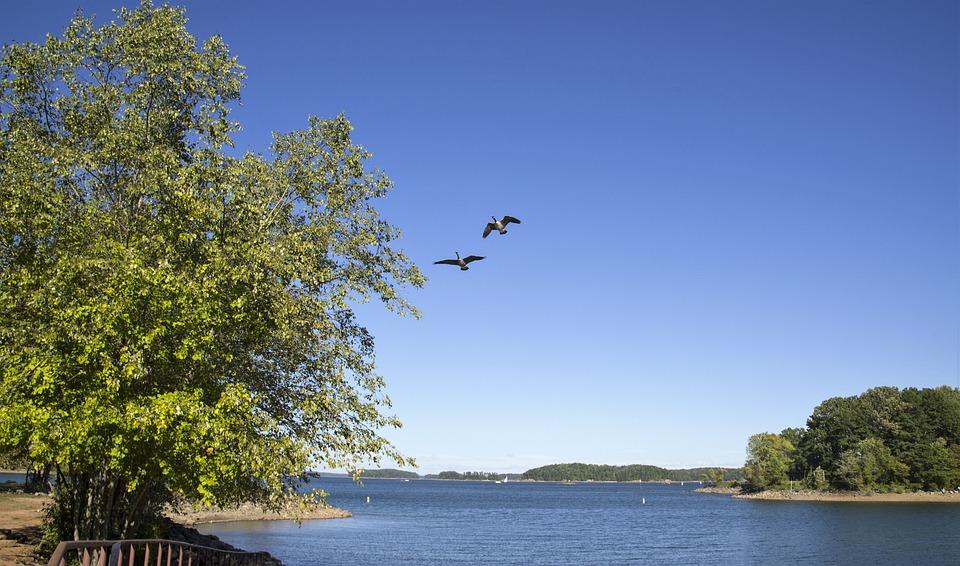 Lake, Landscape, Sky, Water, Blue, Peaceful, Scenery