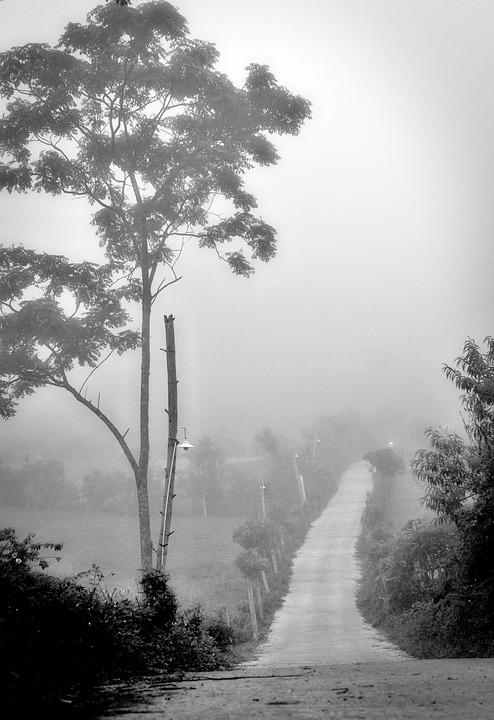 Mộc Châu, Road, Vietnam, Scenery, Natural, Travel