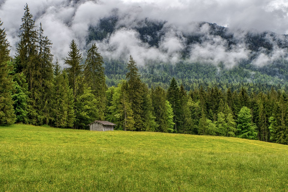 Forest, Clouds, Hut, Scenic, Nature, Mountains
