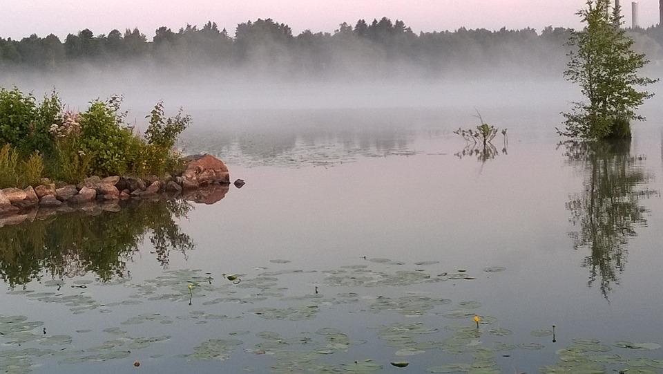 Beach, Fog, Lake, Water, Landscape, Scenic, Calm