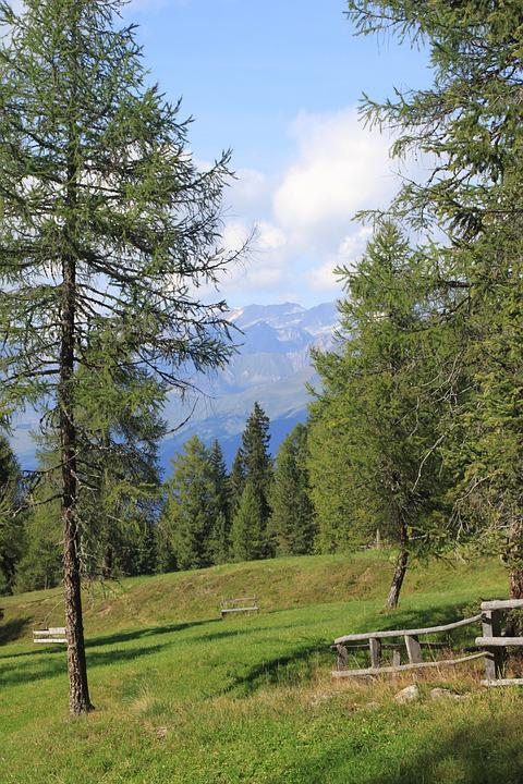 Mountains, Tree, Idyll, Nature, Scenic, Summer