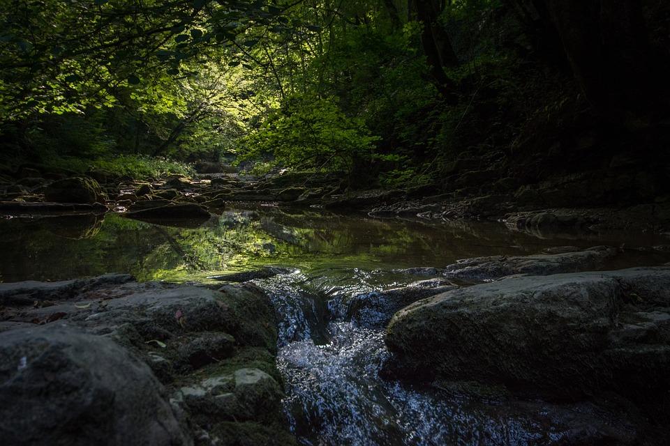 Bach, River, Nature, Forest, Schliechemklamm