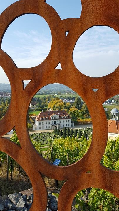 Vineyard, Distant View, Schloss Wackerbarth