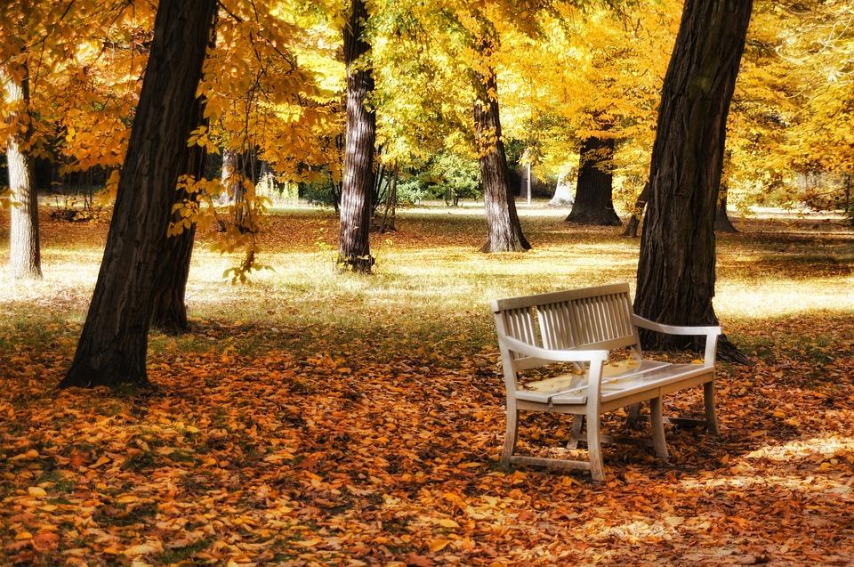Schlosspark Charlottenburg, Castle Park, Berlin, Autumn