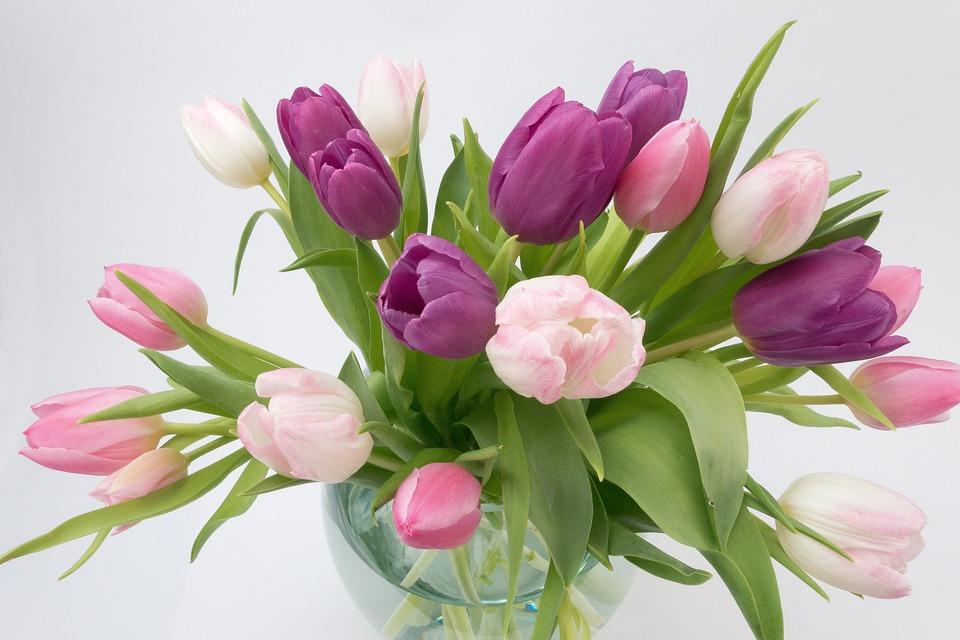 Free photo Schnittblume Bouquet Flower Spring Flower Tulip - Max Pixel
