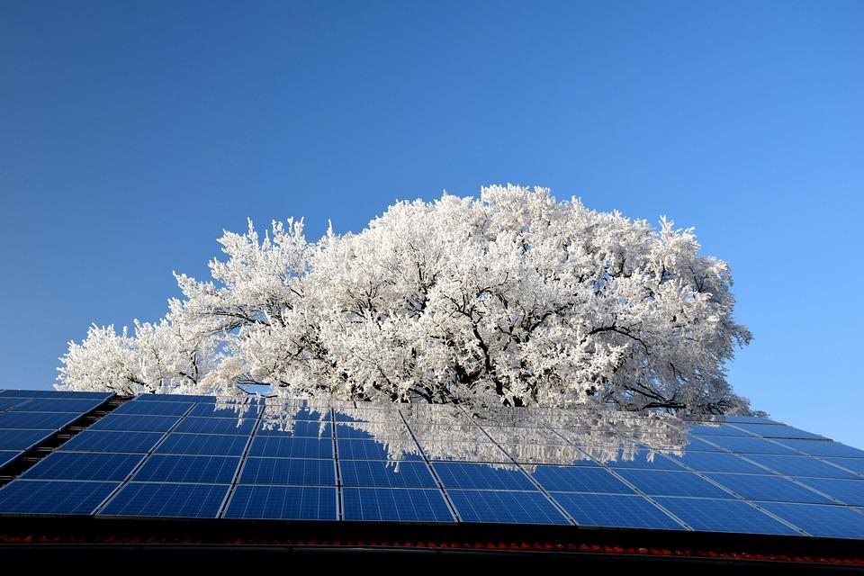 Sky, Nature, Schönwetter, Tree, Photovoltaic
