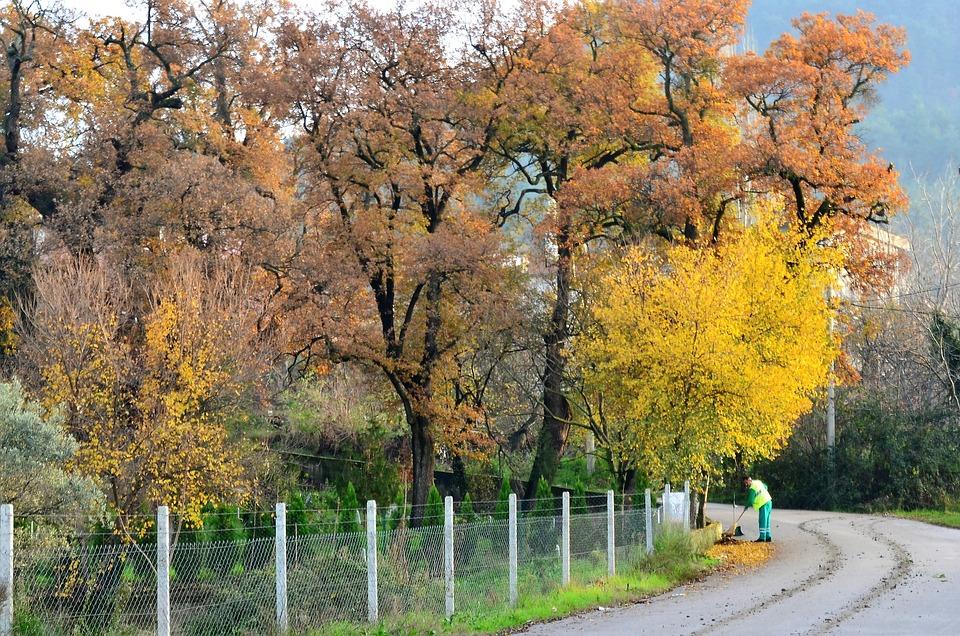 Autumn, Turkey, Scholarship, Doburca, Village Landscape