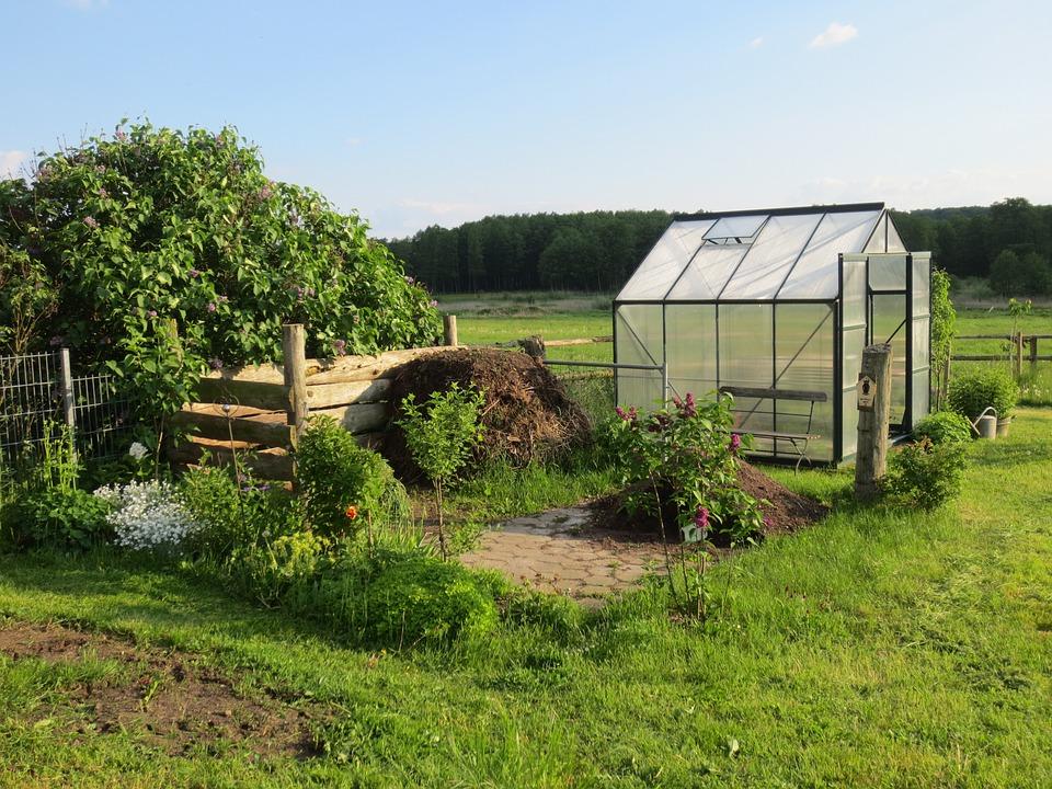 Greenhouse, Allotment, Garden Shed, Garden, Schwerin