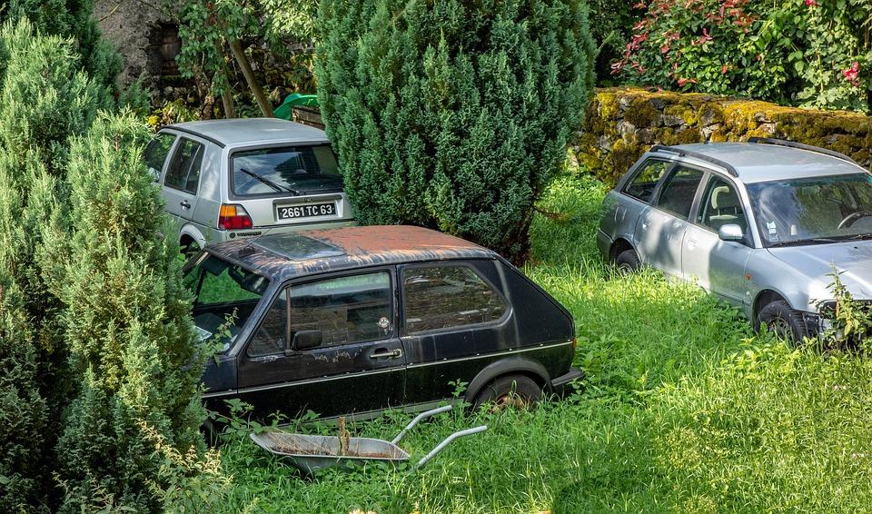 Wreck, Car, Garden, Rusty, Vehicle, Old, Scrap
