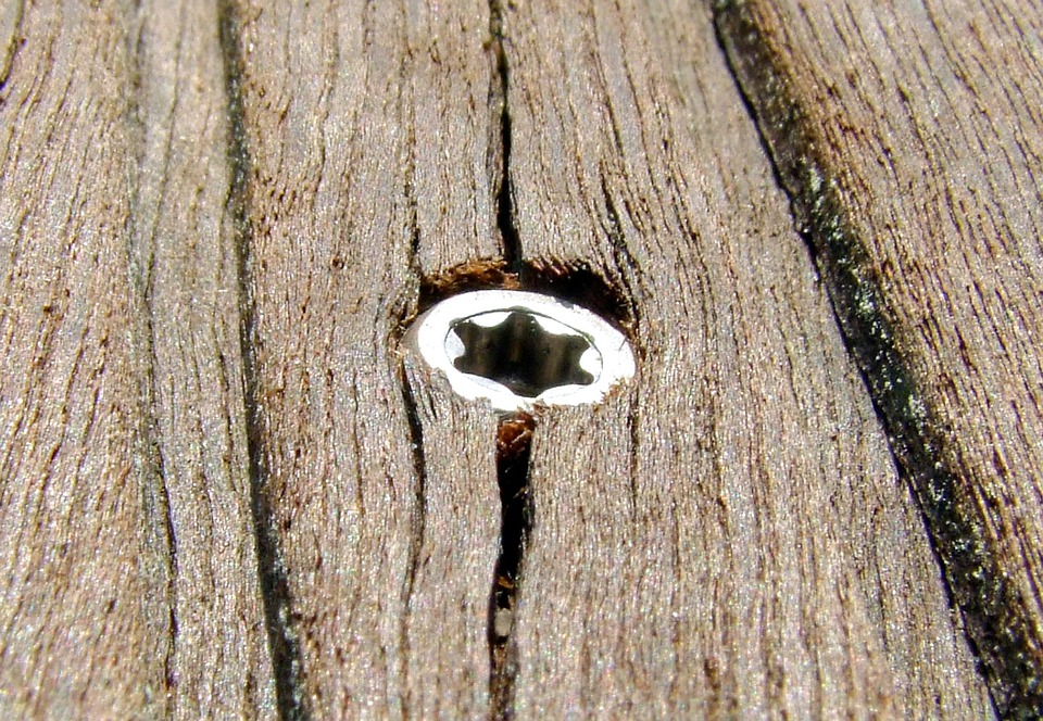 Wood, Screw, Brown, Metal, Screw Head