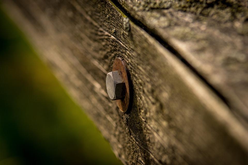 Nature, Close Up, Wood, Screw, Macro, Material