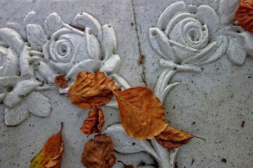 Rose, Stone Rose, Ornament, Decoration, Sculpted
