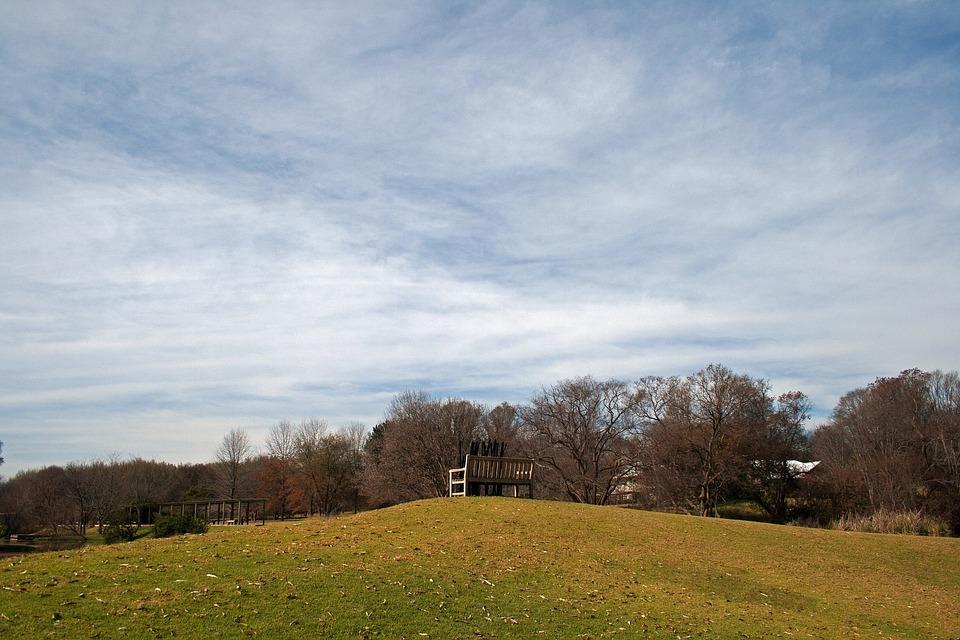 Sculpture, Bench, Art, Park, Lawn, Green, Trees, Sky