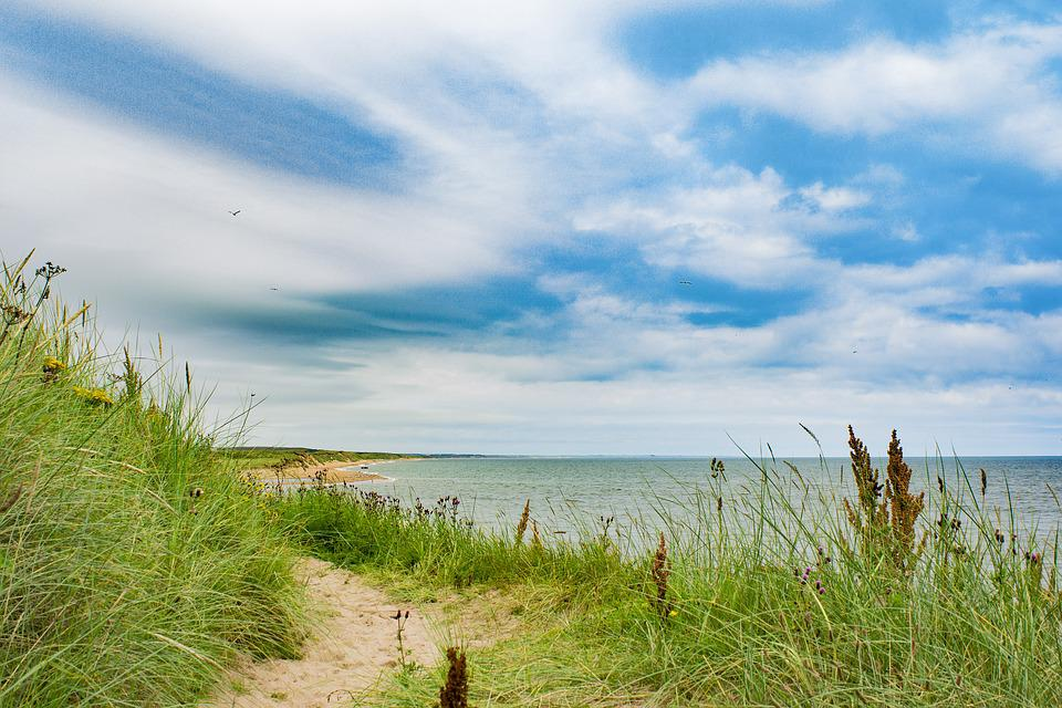 Aberdeen, Beach, Grass, Seaside, Sea, Sky, Water, Ocean