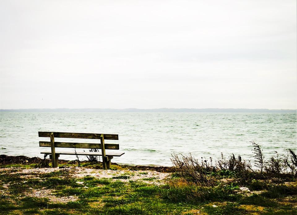 Sea, Baltic Sea, Bank, Beach, Landscape, Quiet Lake