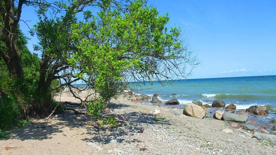 Baltic Sea, Beach, Coast, Sea