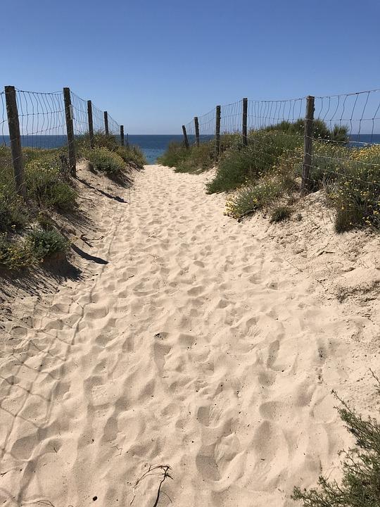 Stand, Away, Sand, Sun, Sea, Dunes, Fence, Island