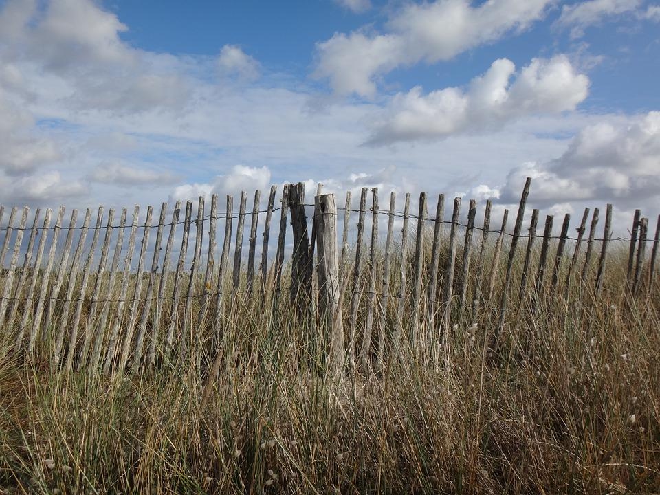 Nature, Sky, Landscape, Fence, Grass, Dunes, Sea