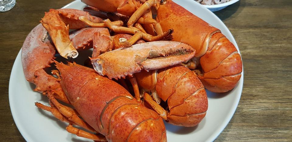 Lobster, Seafood, Sea, Food, Restaurant, Crustaceans