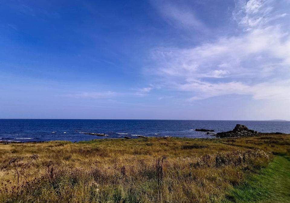 Nature, Sea, Coast, Horizon, Ocean, Water, Meadow