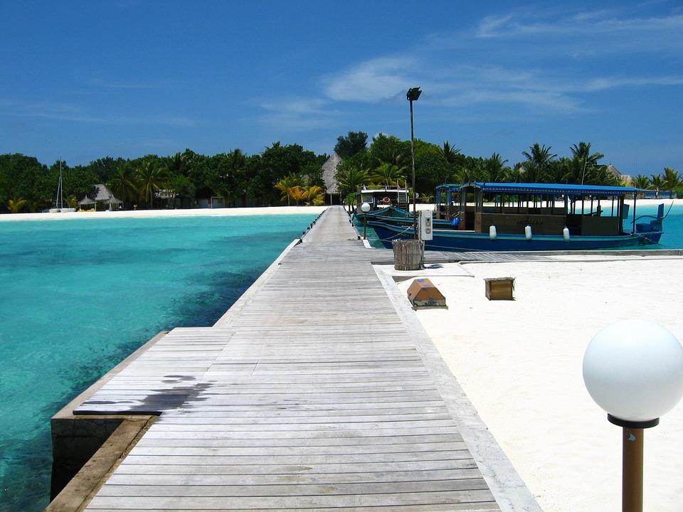 Sea, Maldives, Jetty, Beach, North Male Atoll, Palms