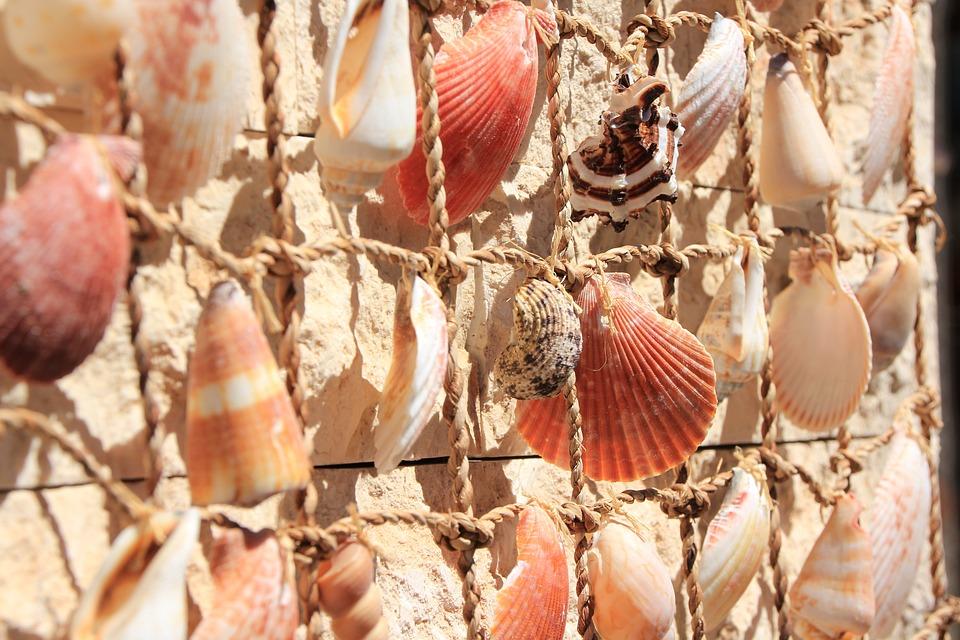 Mussels, Deco, Maritime, Decorative, Sea, Flotsam