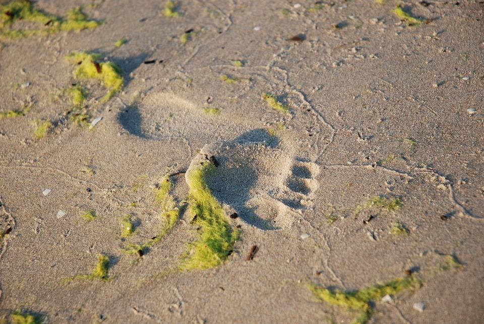 Sand, Nature, Beach, Coast, Waters, Summer, Sea