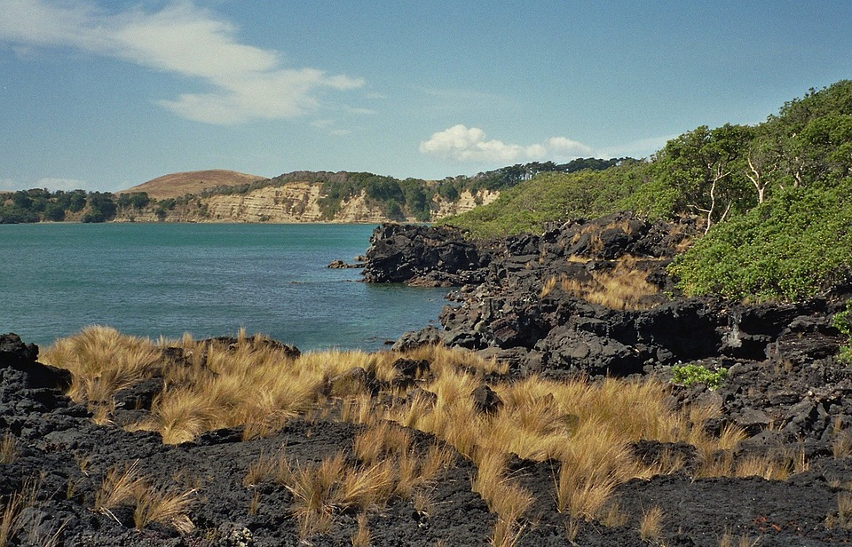 New Zealand, Sea, Ocean, Water, Plants, Beach, Lava