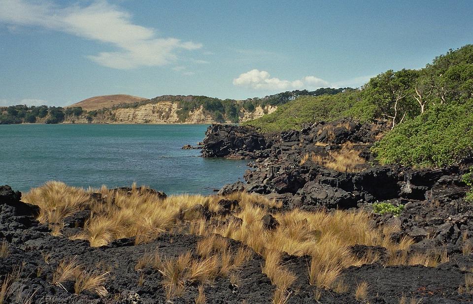 New Zealand, Sea, Ocean, Water, Plants, Beach, Lava