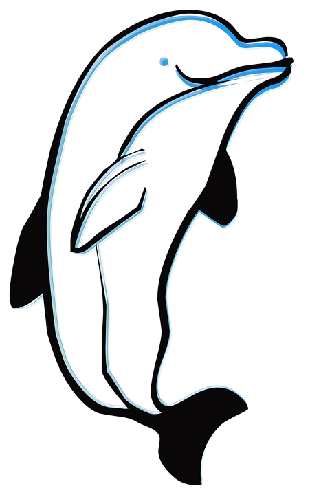 Dolphin, Outline, Animal, Sea, Ocean, Silhouette, Fish