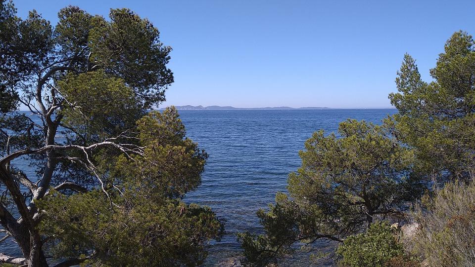 Nature, Sea, Outdoors, Trees, Ocean, Landscape