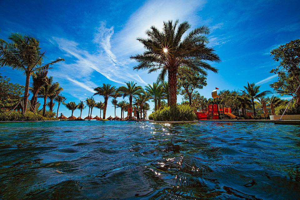 Sea, Palm Trees, Tropical, Paradise, Vacation, Travel