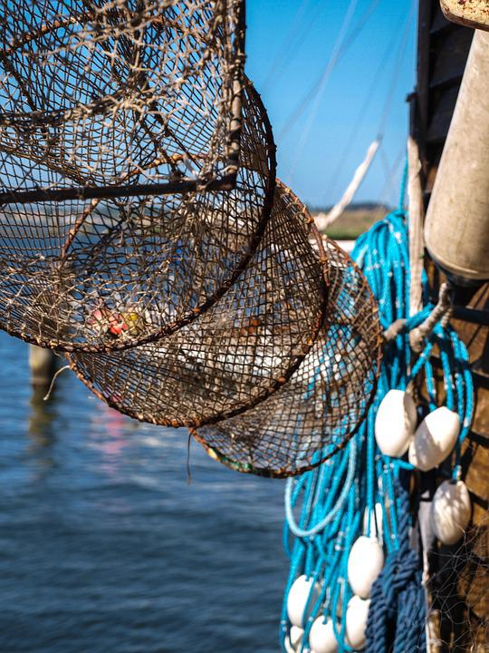 Port, Fish Trap, Fishing, Network, Sea, Safety Net