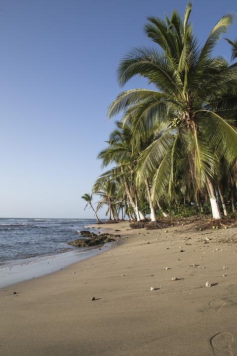 Beach, Sea, Ocean, Sand, Waves, Water, Coast, Travel