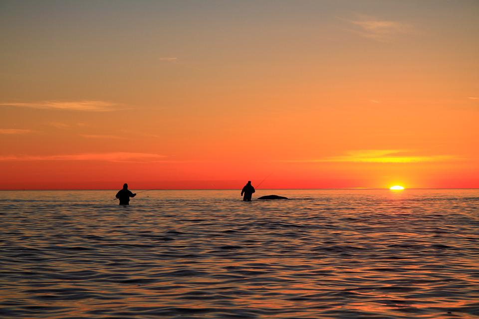 Sunset, Sea, Fish, Sea Fishing, Bornholm