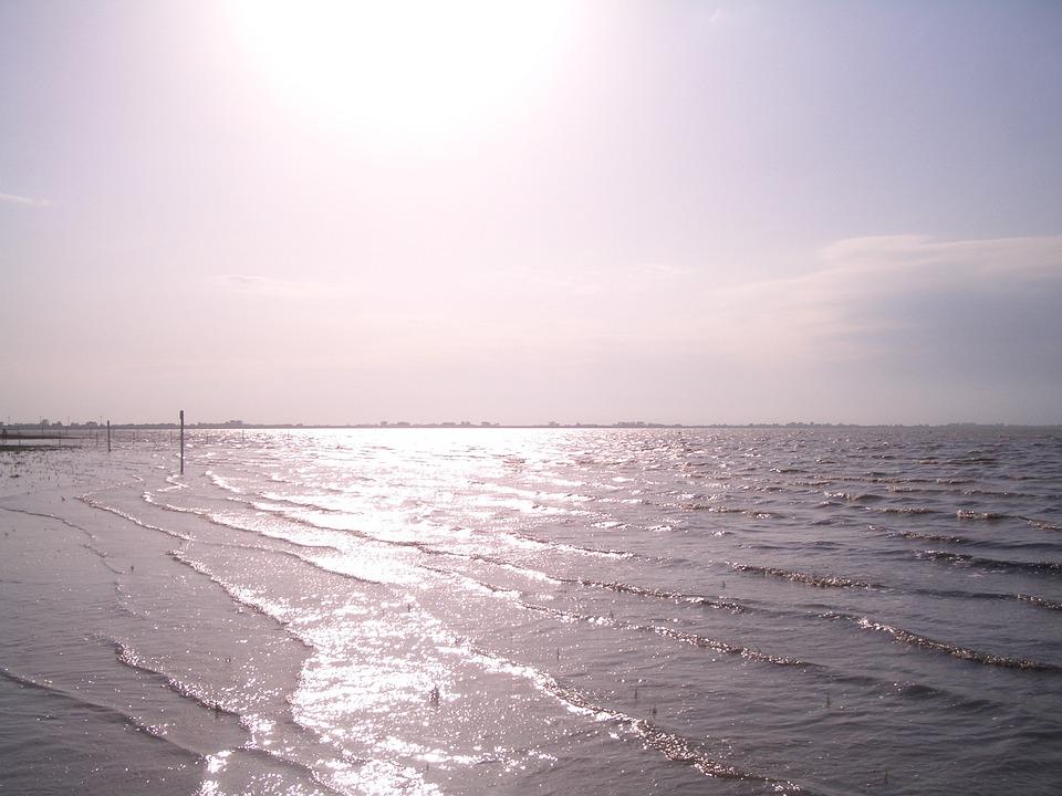 North Sea, Back Light, Sea, Sun, Sparkle, Water, Sunset