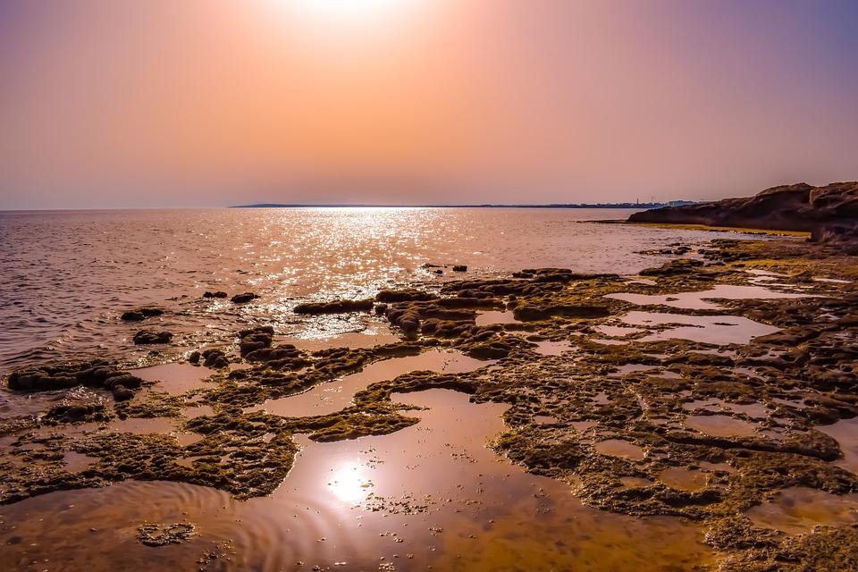 Sunset, Sea, Water, Reflections, Dusk, Seashore, Beach
