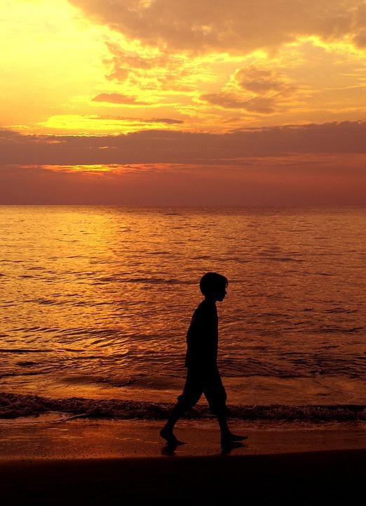 Sunset, Sea, Beach, Silhouette