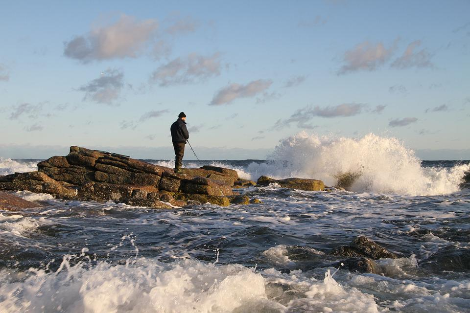 Sea, Sea Trout Fishing, Sea Trout, Coast, Wave