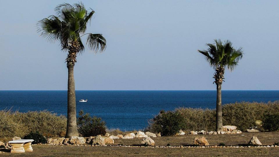 Garden, Palm Trees, Property, Sea View, Horizon