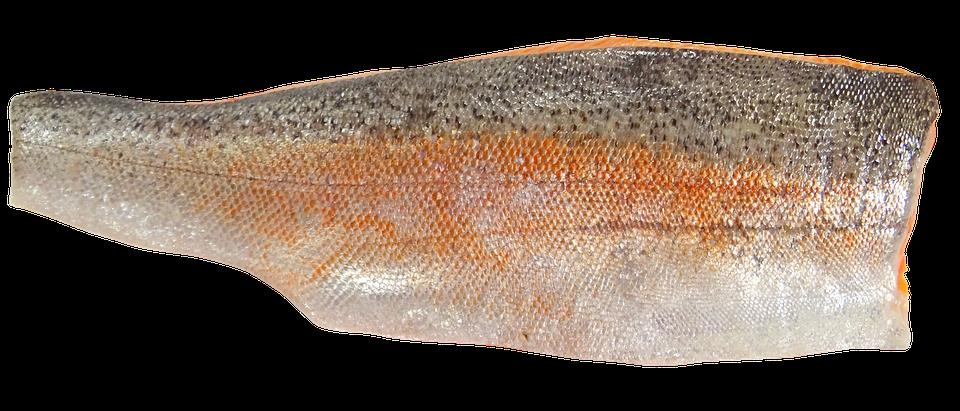 Sea Trout, Trout, Fillet, Fish, Food, Sea-trout