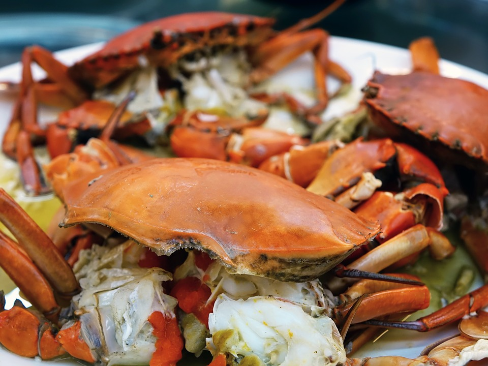 Crab, Steamed, Seafood, Food, Fresh, Orange, Cooking