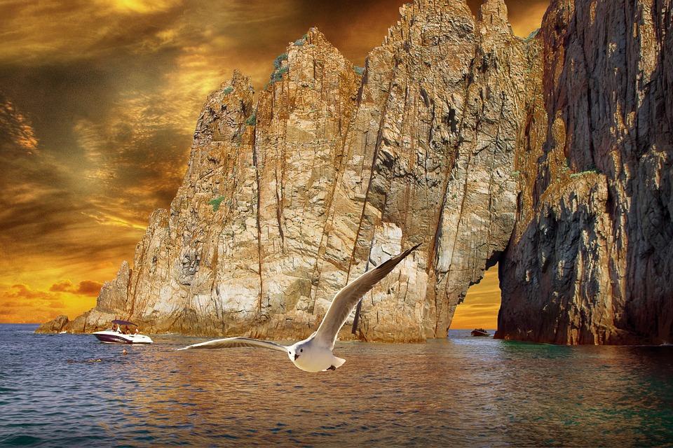 Landscape, Sea, Rocks, Seagull, Sky, Sunset, Clouds